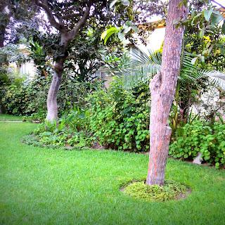 Quintal da Quinta de los Libertadores em Lima