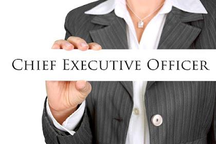 Apa Itu CEO (Chief Executive Officer) dan Tugasnya di Perusahaan