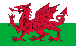 welsh flag, flag of wales, red dragon,