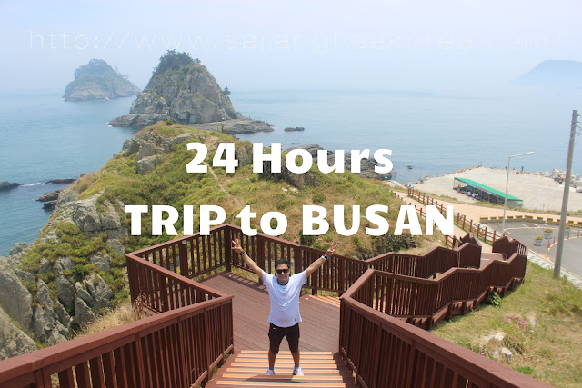 A 24 Hours Itinerary to Busan