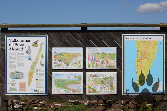 Suede-ile-Oland-stora-alvaret-panneau