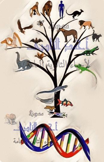 الجين – كودونات M.RNA – الشفرة الوراثية تؤيد نظرية التطور - الثالث الثانوى