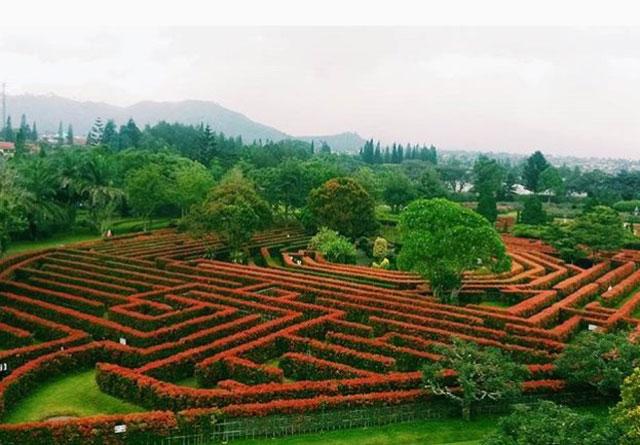 Taman Labirin/Maze Garden