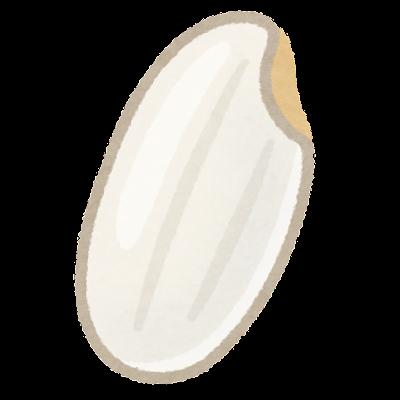 胚芽米のイラスト(米)