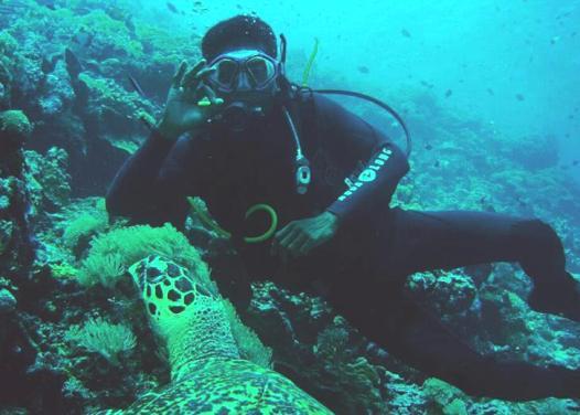 Penyelam Manca Negara Akan Ramaikan, Underwater,  Festival Pesona Takabonerate,  #AyoKeSelayar