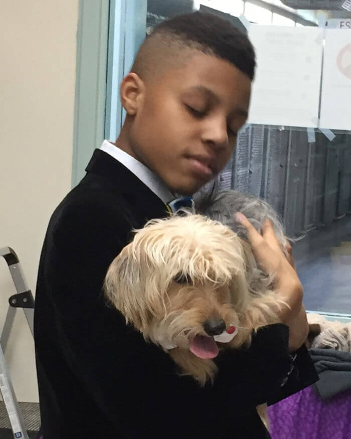12-Year-Old Creates Stylish Bow Ties For Shelter Dogs And Cats To Help Them Find A Home