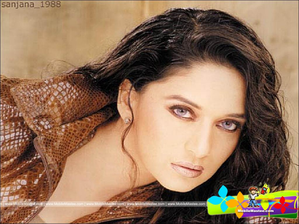Hot  Sexy Madhuri Dixit Hot Wallpapers Collection-1592