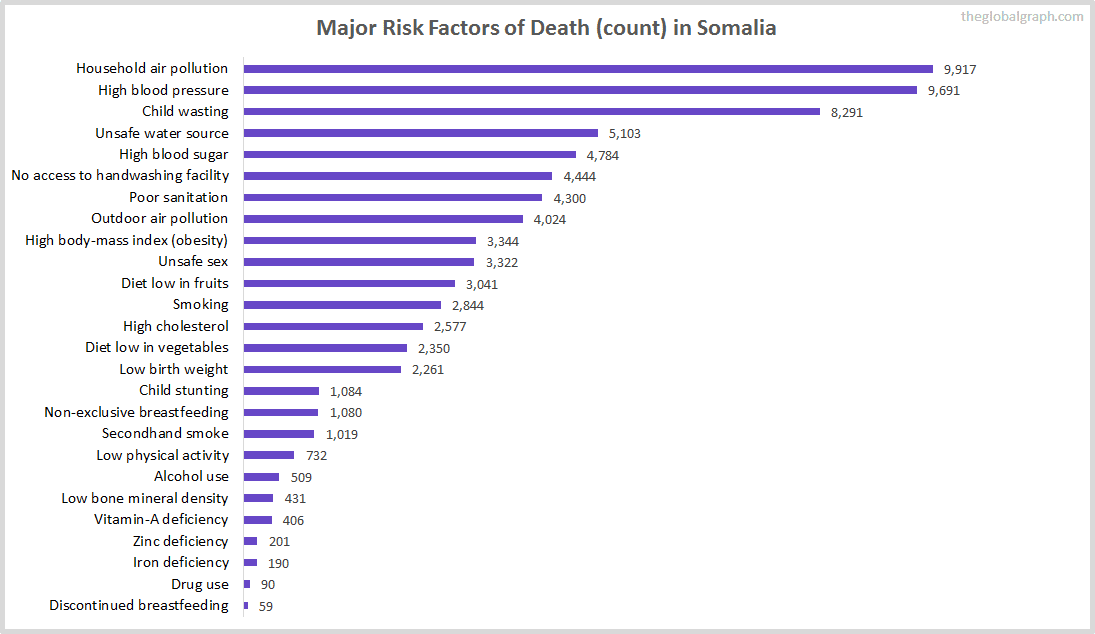 Major Cause of Deaths in Somalia (and it's count)