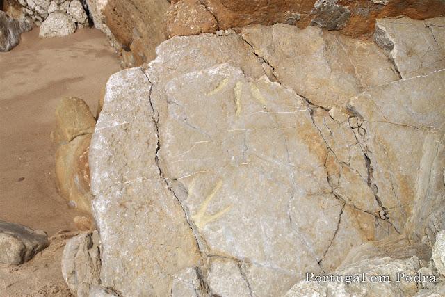 pegadas de dinossauros Salema