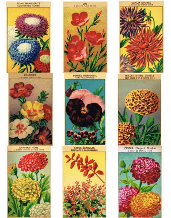Vintage seed packets free printables