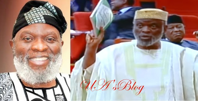 'The Nigerian constitution can never give us peace and progress' – Senator Shola Adeyeye cries out (Video)