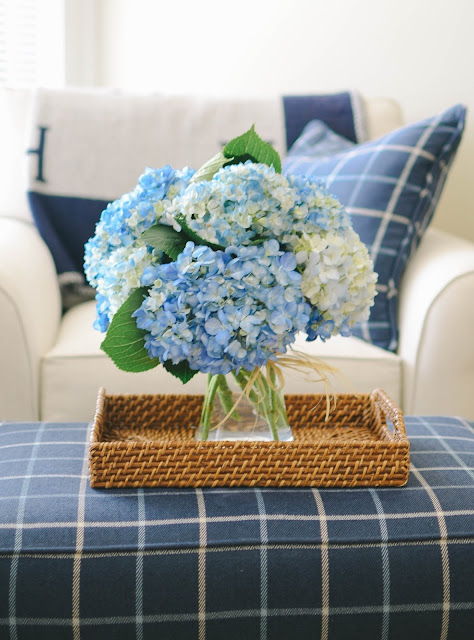 How To Keep Your Hydrangeas Alive Longer