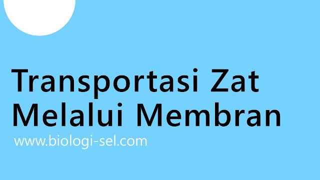 Judul artikel transportasi zat melalui membran