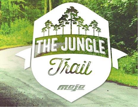 A 'Jungle Trail' Created By The MOJO Tribe In Southern India
