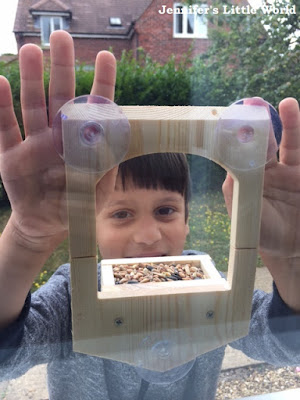 Putting a bird feeder in the window