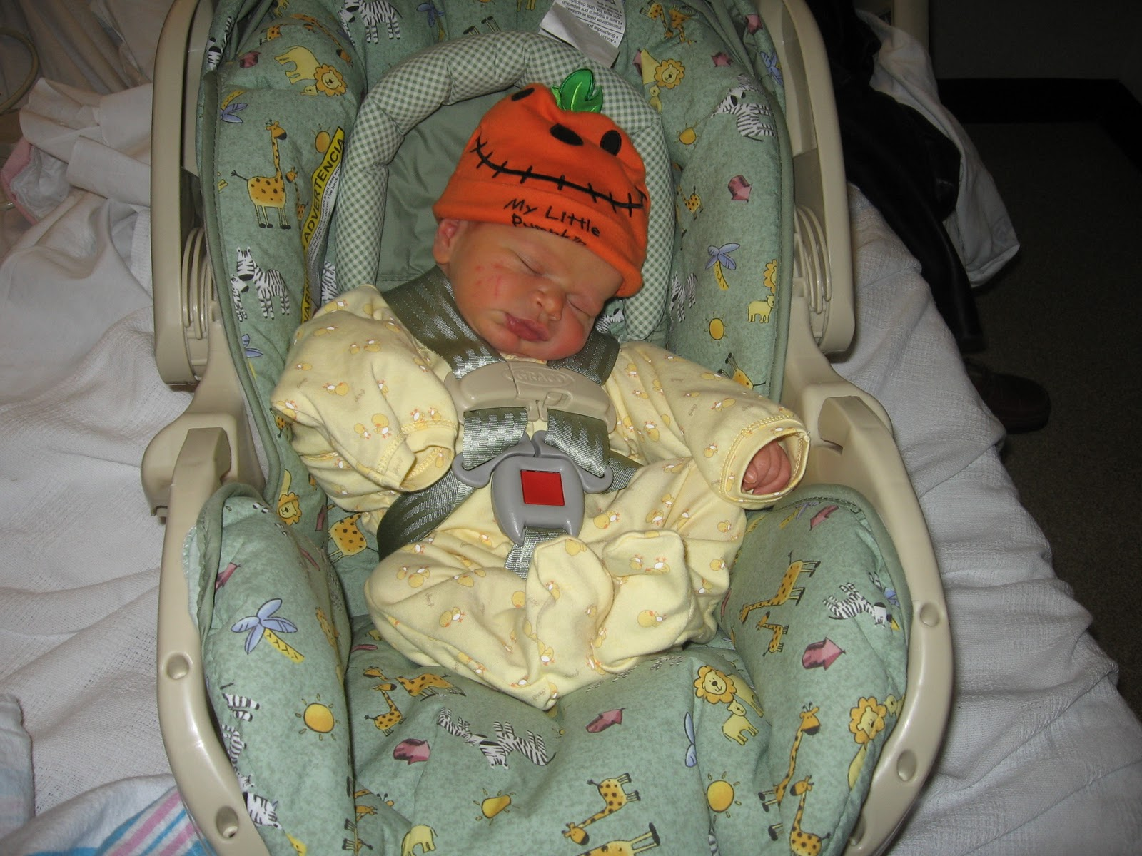 Jessica On Babies Car Seat Rule 3 Newborns