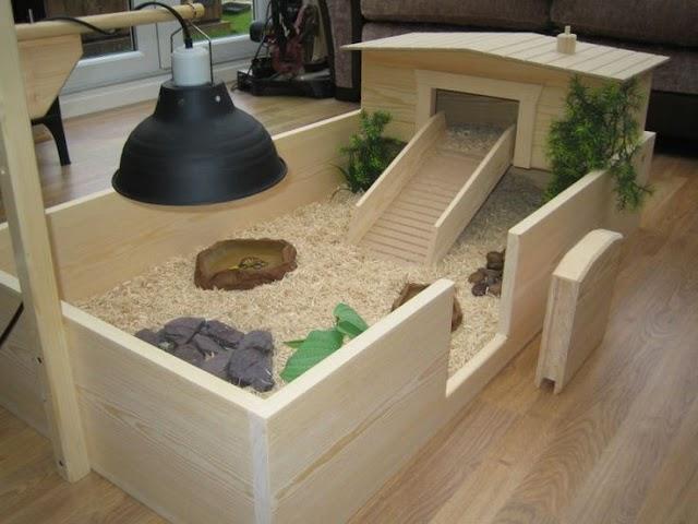 Một số hình ảnh chuồng rùa trong nhà