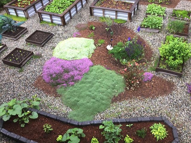 Organic urban yard food garden.