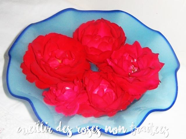 DIY-WATER-ROSE-eau-de-rose