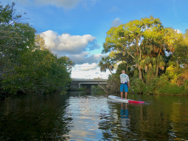 Danny of Paradise Paddling approaching Turkey Creek Sanctuary Palm Bay