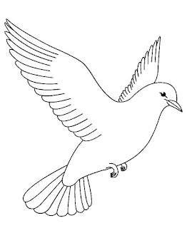 Romantic Pigeon Coloring Pages