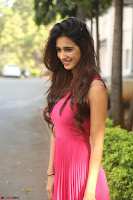 30 Best Pics of Disha Patani Tiger Shroff Girlfriend  Exclusive Galleries 023.jpg
