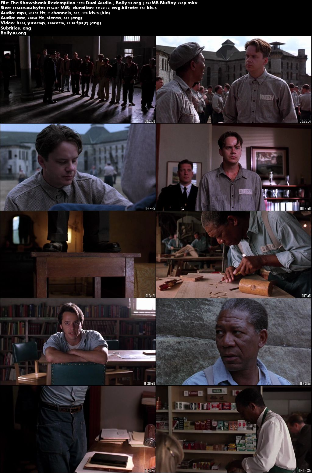 The Shawshank Redemption 1994 BluRay Hindi 450MB Dual Audio 480p Download