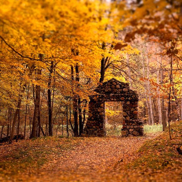 Iwallpapers Autumn Wallpapers