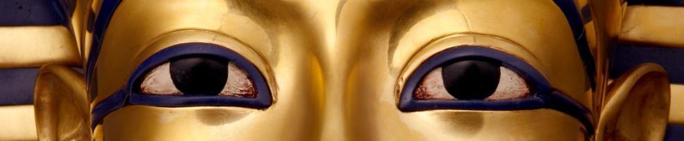 Resultado de imagem para As DHARMAN OXINTO têm uma nova visão