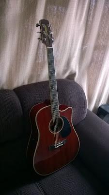 luthier, troca de captação, zona leste sp