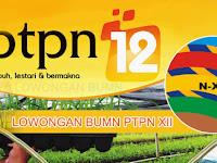 Lowongan BUMN PT Perkebunan Nusantara XII 2019