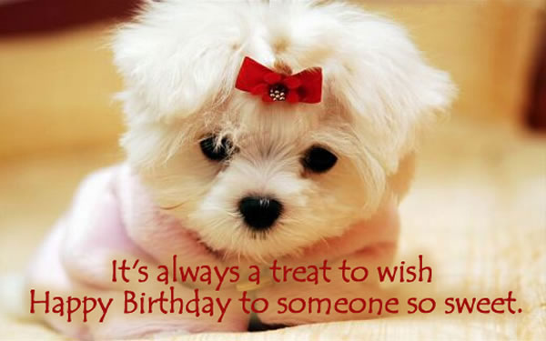 So here are the  Special Birthday Quotes Wishes, Happy Bday Quotes