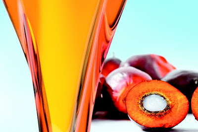 All about Palm Oil: Palm Oil Production and The Nutrition ...
