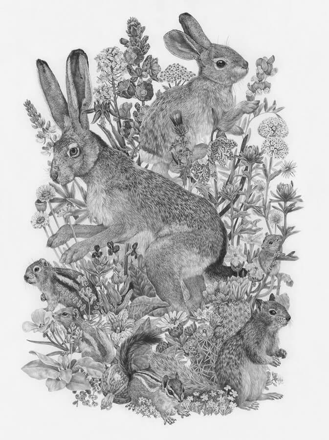 06-Small-Mammals-Zoe-Keller-www-designstack-co