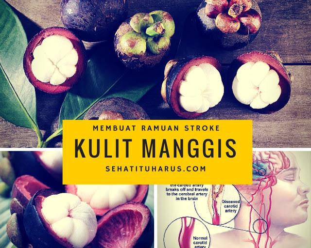 Ramuan Obat Stroke Dari Kulit Manggis