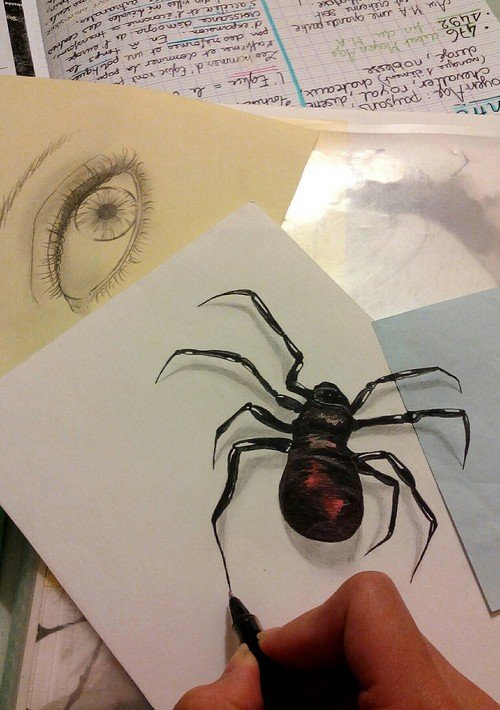optical-illusion-real-spider-or-painted