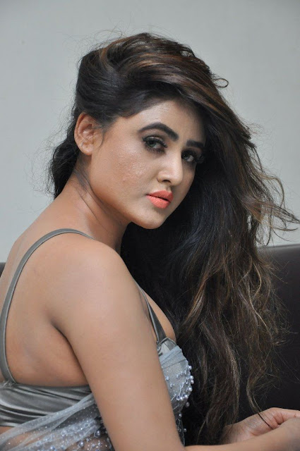 Actress Sony Charistha Latest Pos in Silver Saree at Black Money Movie Audio Launch  0002.jpg