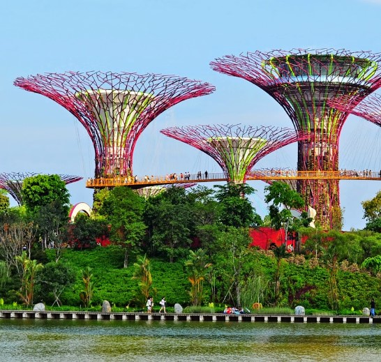Dapatkan Tiket Gardens by The Bay Singapore Murah lewat Tripvisto