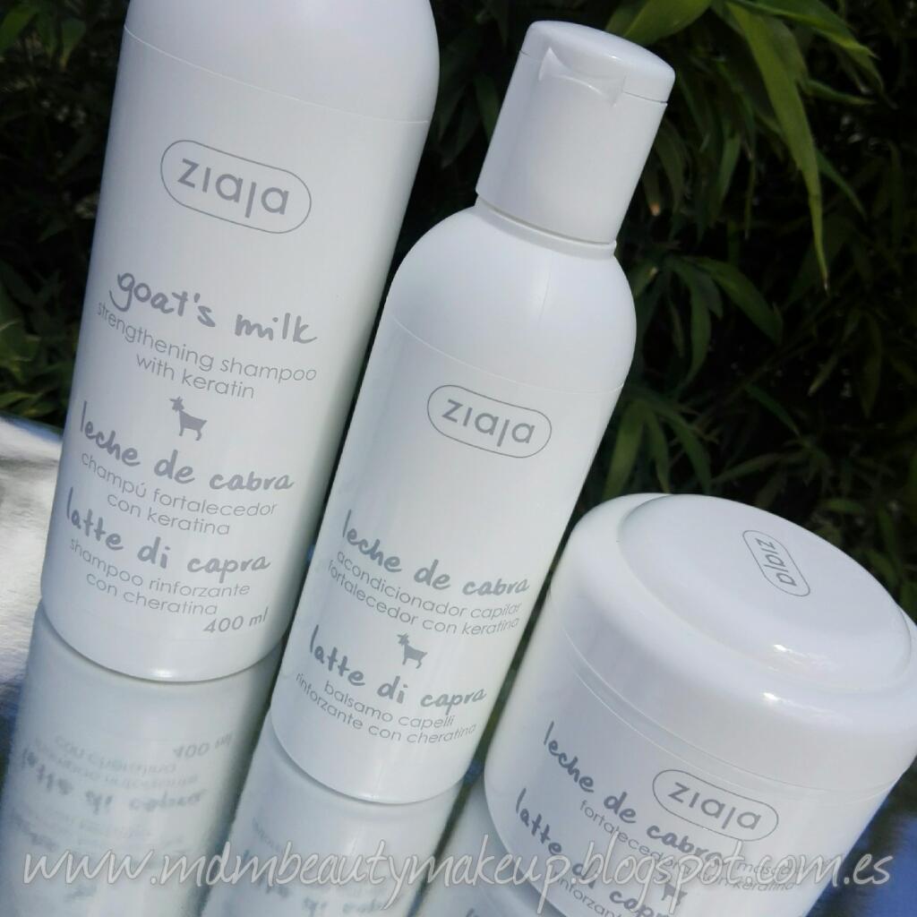 De ricino y el aceite de bardana para los cabellos de la máscara para los cabellos grasos