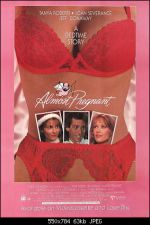 Almost Pregnant 1992 Watch Online