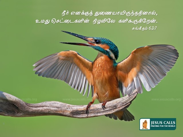 Bible Verse Tamil Wallpapers Free Download