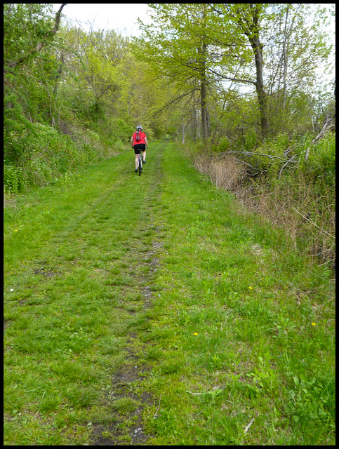 Wallkill Valley Rail Trail. Dirt and crushed stone all the way to Rosendale.