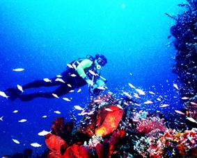 pesona wisata alam taman bahari bunaken manado Tempat Wisata pesona wisata alam taman bahari bunaken manado