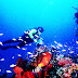 pesona wisata alam taman laut bunaken manado