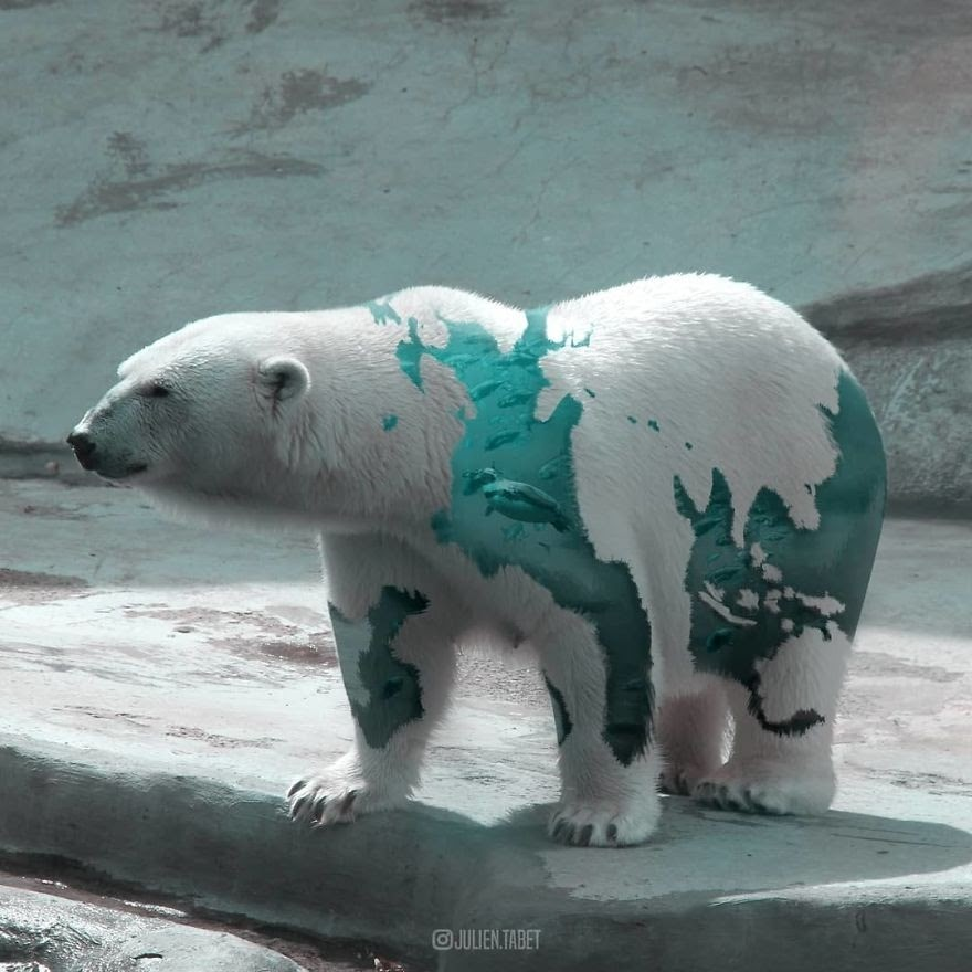 11-Polar-Bear-on-Concrete-Julien-Tabet-Animals-and-Architecture-Photoshopped-Surrealism-www-designstack-co