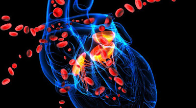 Common Leading Causes Behind Hypertension | Wellness Clinic