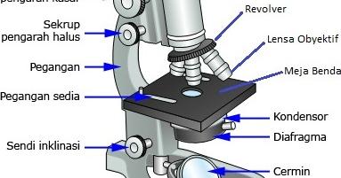 Pengertian Fungsi Dan Bagian Mikroskop
