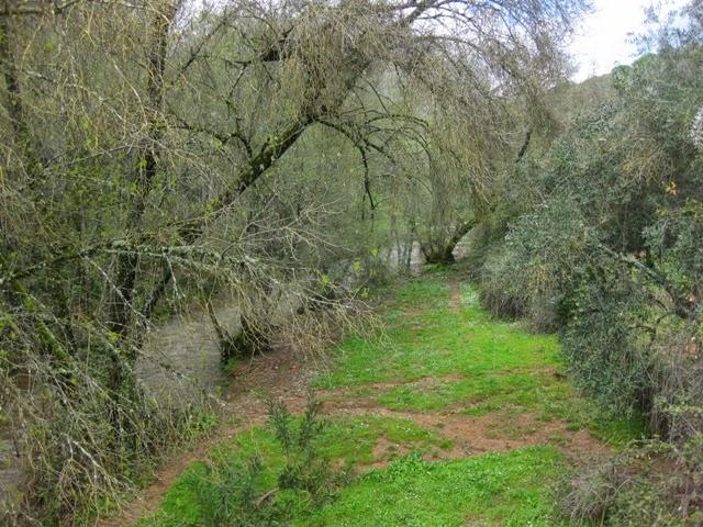 Ribera del río Huesna
