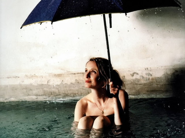 Julie Delpy HD Wallpapers Free Download