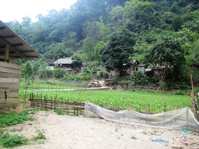 vietnamese village ba be national park vietnam